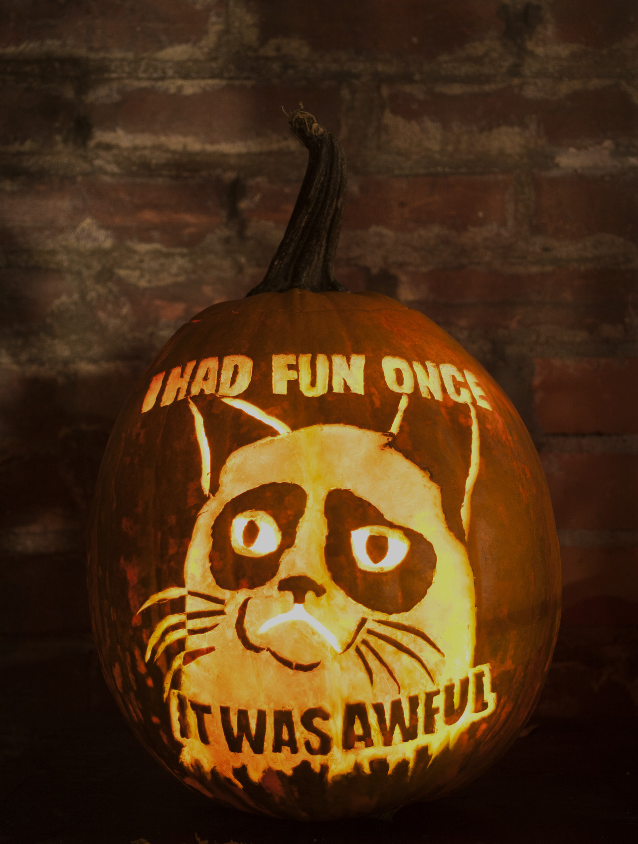 GRUMPKIN CAT! I present to you my Jack 'O Lantern Pièce de résistance and tribute to my favorite feline, my Tard the Grumpy Cat pumpkin!  Lovingly hand carved by me (theslyestfox), photo by my awesome housemate Mikael Cosmo. Seriously, guys, this might be the greatest thing I've ever done. This even trumps my Adventure Time Pumpkins from two years ago…