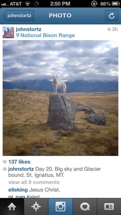 Follow this IGer. They Will open up your mind to American travel.