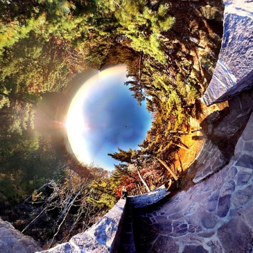 @discoponypet at the #middletown over look #fall #stereographic