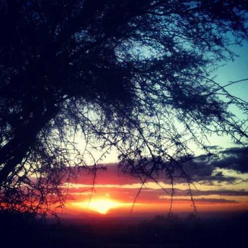 The beauty here is incredible. #arizona #sunset #mesa #raeontheroad2012 (at Las Sendas)