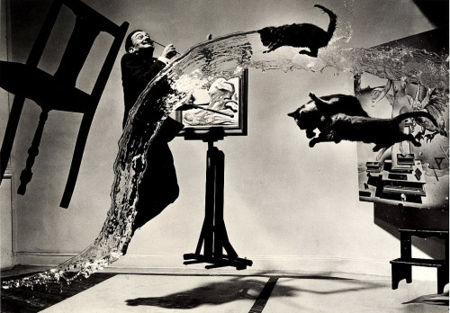 """Dali Atomicus"" by Philippe Halsman - 1948 (by monkeyc.net)"