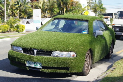 Is this a grass car?