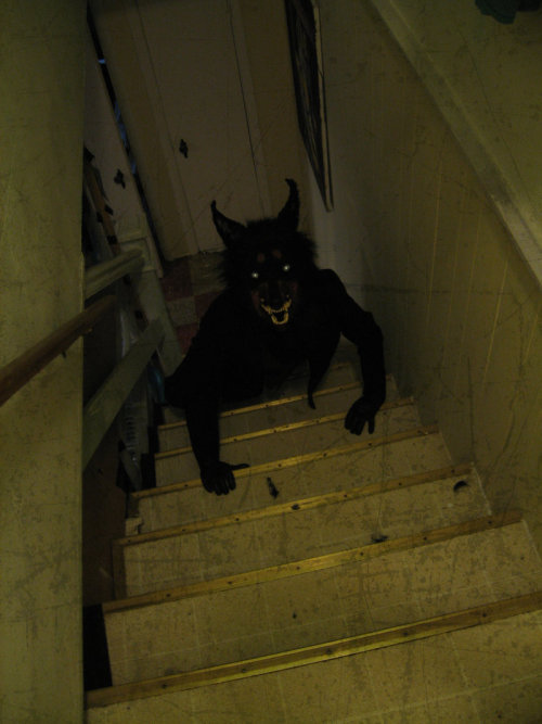 veryspooky:  this is exactly what is following you up the stairs if you don't look behind you on the way up