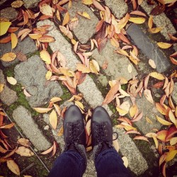 Autumn leaves #london