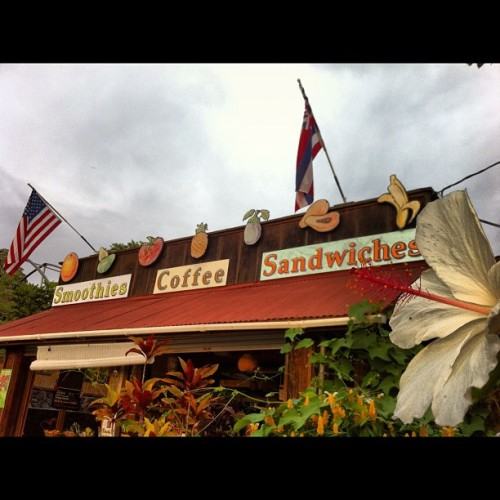 The South Kona Fruit Stand with white #Hibiscus in foreground on a cloudy afternoon in #South #Kona, #BigIsland #Hawaii — #hiig #Honaunau #USA #Hawaiian #flags