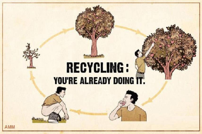 recycling: you are already doing it