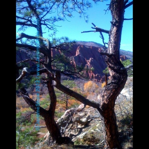 A summer-like day in October on a hike in Roxborough State Park near #Denver, #Colorado.  Soon the snow will fly but for now we are enjoy warm & sunny days. (at Roxborough State Park)