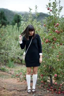 calivintage:  new outfit post! eating apple donuts in oak glen. you can click here for more photos and outfit details!