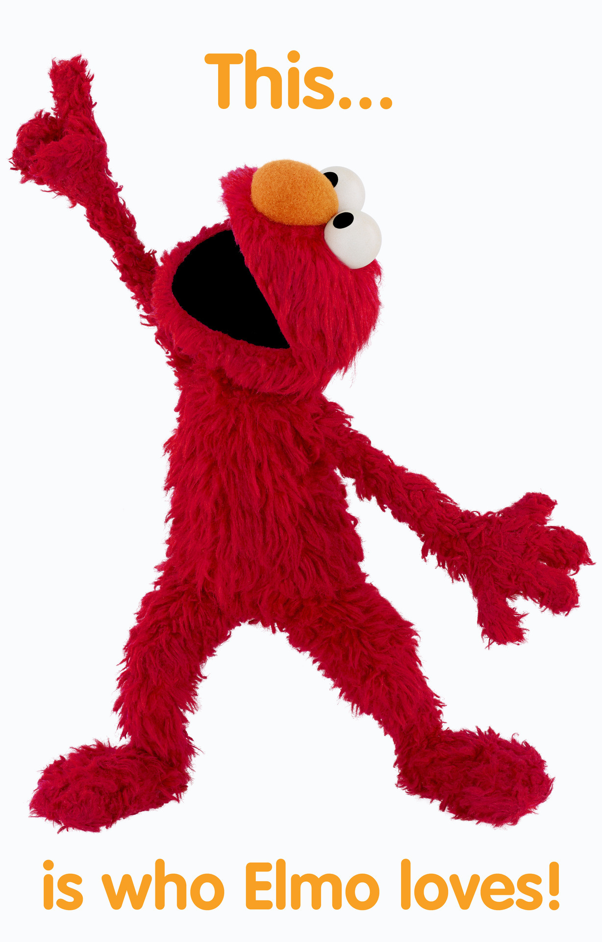 sesamestreet:  Friendship Week continues! Reblog this and Elmo will point to your name, so you can tell the world that Elmo loves you!