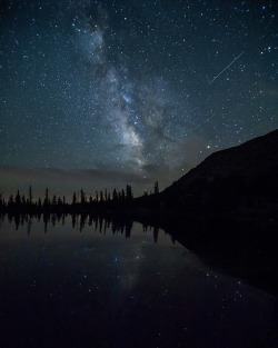 theflow-theme:  Perseid Meteors and the Milky Way by Summit42