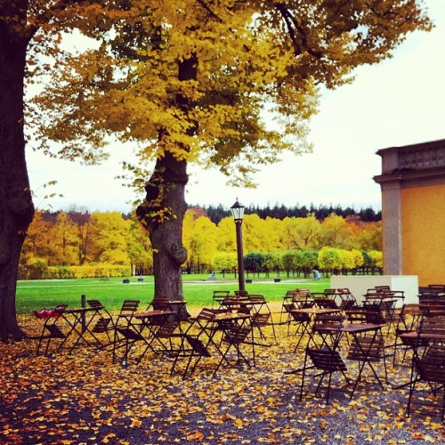 empty courtyard. #stockholm #sweden #travel #autumn  (at Ulriksdals Slotts Cafe)
