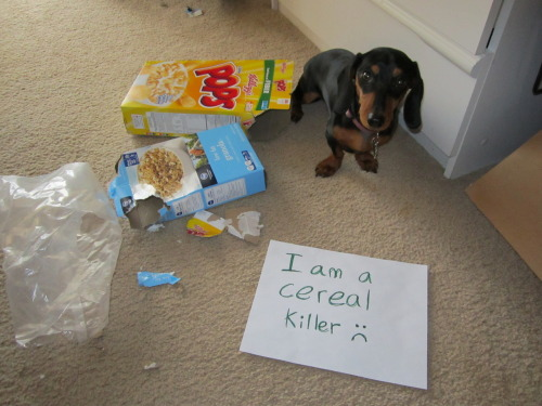 Lady the Cereal Killer.