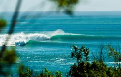 surfthat:  indonesia