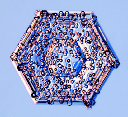scienceyoucanlove:  Rime crystalClouds are made of countless water droplets and sometimes these droplets collide with and stick to snow crystals. The frozen droplets are called rime.