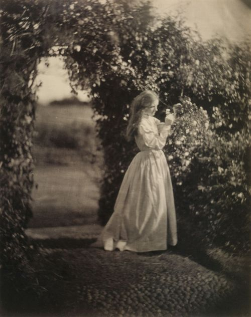 liquidnight:Julia Margaret Cameron  The Gardener's Daughter (Mary Ryan), 1870 Albumen print From Julia Margaret Cameron's Women