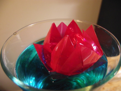 Experimenting with plastic floating origami.