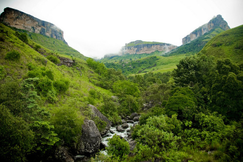 Royal Natal National Park, Drakensberg Mountain, South Africa. Parque Nacional Royal Natal, Montanhas Drakensberg, África do Sul. Photo copyright: Jason Jones