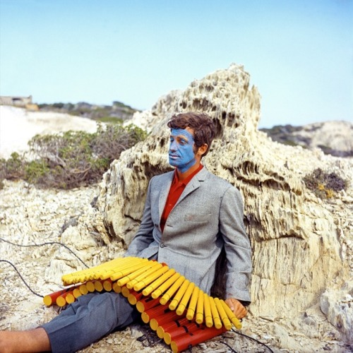 lightlythrown:  Jean-Paul Belmondo - Pierrot Le Fou Dir - Jean-Luc Godard (by no-other-thrill) _