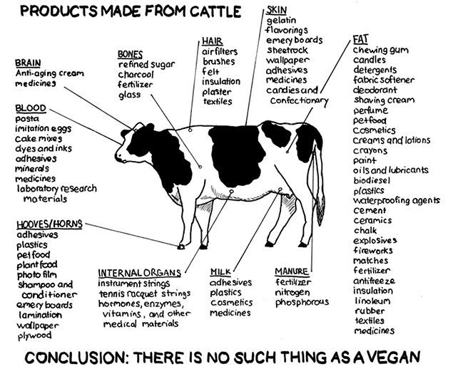 Unless You've Never Used Any Of These Products You Aren't A Real Vegan.