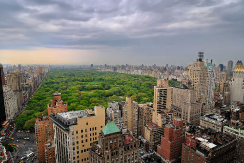 Billionaire Hedge Fund Manager Donates $100M to Central Park A New York hedge fund manager who made billions from predicting the housing collapse has donated an unprecedented $100 million gift to Central Park Conservancy.