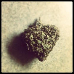 m4rlboro:  Heart bud 👍 #weed #bud #stonerchicks #heart