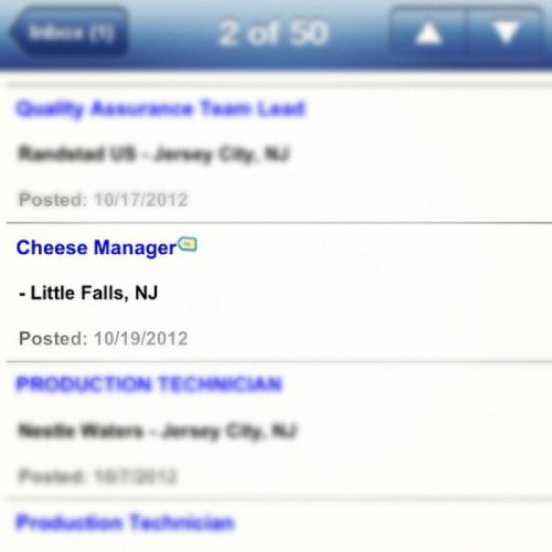 Cheesy Job Title How much cheddar would I make at this job? Please brie specific.