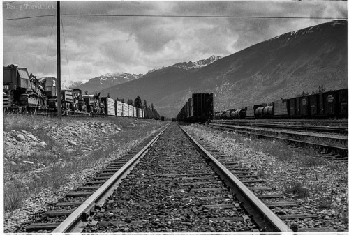 CN Jasper Rail Yard on Flickr. Via Flickr: Sometime in the 1970s Jasper, Alberta Photograph by my Dad Scan/edit/retouching by myself.