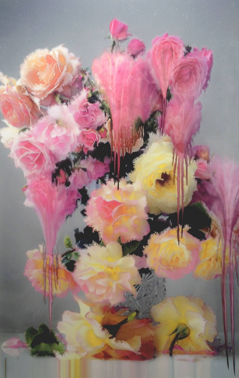 bienenkiste:  Flora, by Nick Knight