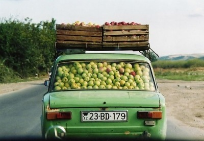 clubmonaco:   Apple Picking  Take a trip to a country orchard and stock up on all the apples you can carry.