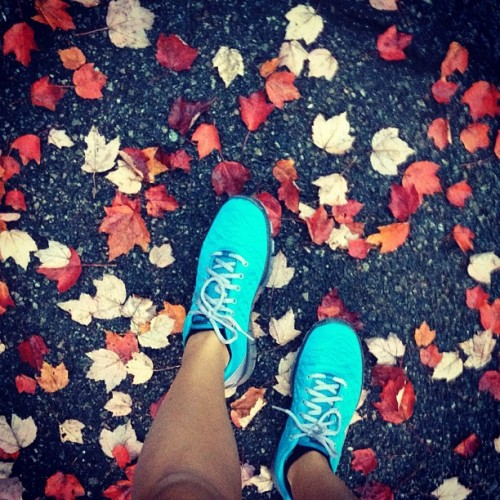 Fresh kicks #teamnike #nike #freetrfit#blue #fall #leaves