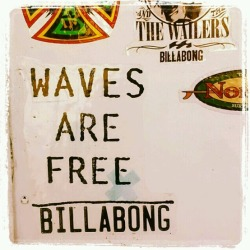 floribbean:  Waves are free!!
