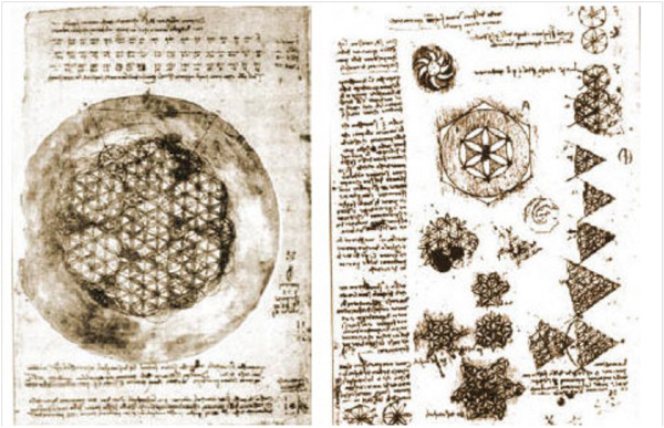 skeletongarden:  Leonardo da Vinci's drawings of The Flower of Life