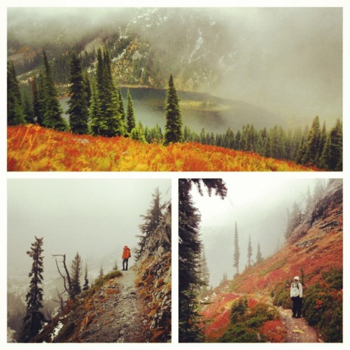 fuckyeahhiking:  A rainy Friday hike at Maple Pass, Washington State loveloveyellow