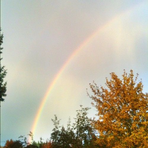 #Rainbow to brighten a rainy day                             #nature #naturelovers #natureporn #outdoors #hiking #sky #skyporn #skylovers #clouds #instagram #iger #igers #iphoneonly #instagramhub #photo #photooftheday #picoftheday #art