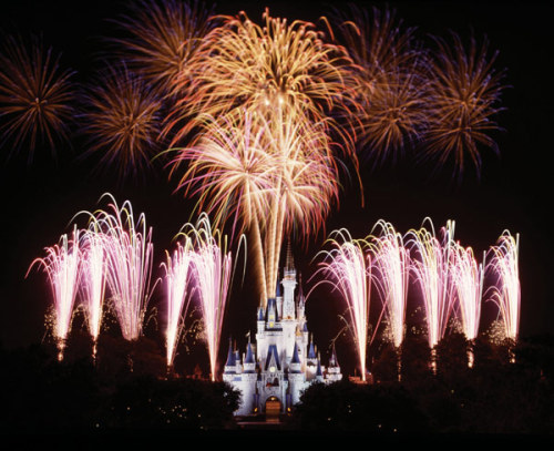 disneyparksafterdark:  Wishes Fireworks, Magic Kingdom, Walt Disney World