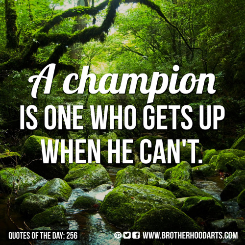 "‎[syahid] Quotes Of Day: 256: ""A champion is one who gets up when he can't."""