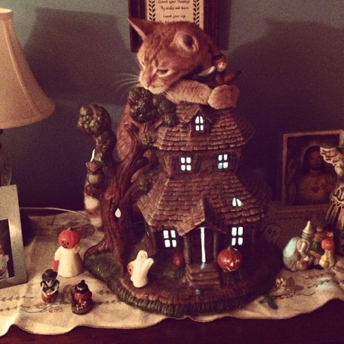 Piper loves the ceramic haunted house my grandmother made.
