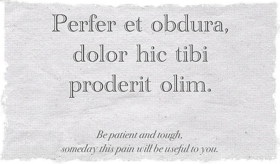 Latin Quotes Ovid. QuotesGram
