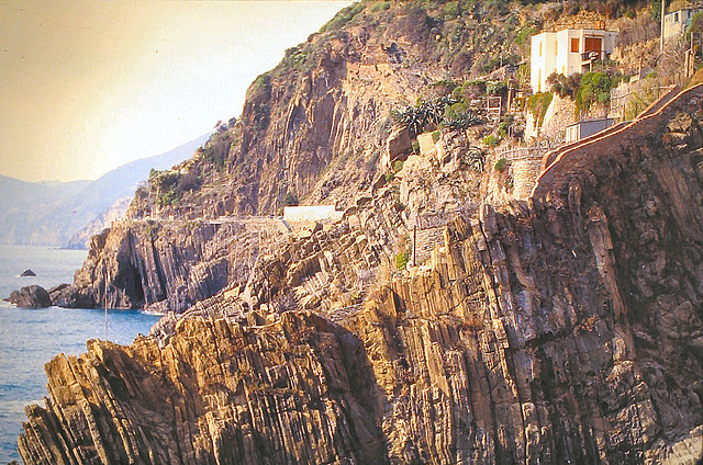 | ♕ |  Via dell'Amore - Cinque Terre, Italy, 1982  | by © pizzodisevo Some parts of the path are very steep along its Rias coastline, including these stairways on the photo.