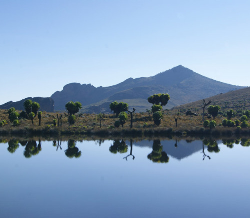 in-kampala:  Mt. Elgon, Uganda We want to go to there.