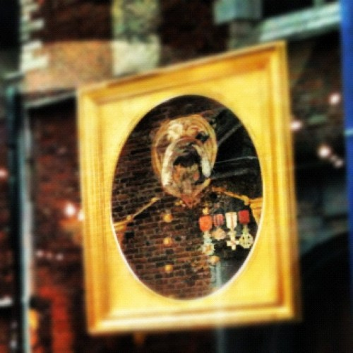 #Dog #general #picture #brussels #bruxelles #military #dogsofinstagram #dogsoninstagram #instapets #cute #fun #funny  #showwindow