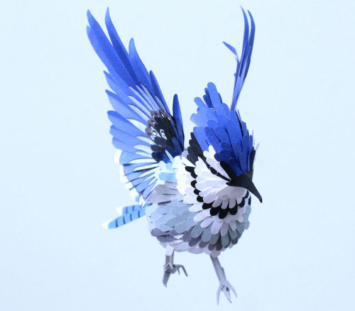 (via paper bird sculptures by diana beltran herrera)