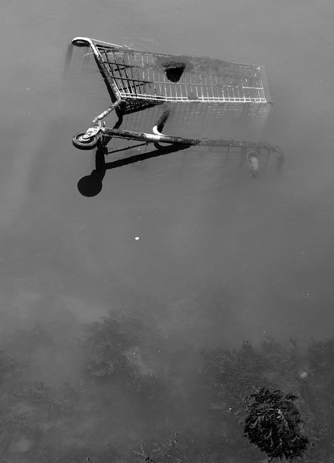 Shopping Cart, East River, Queens