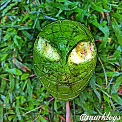 GUAVA SPIDERMAN. lol created by me  #ihch_green #instagramhub #instacanvas #instagram #instafashion #instafood #hubfood #instagood #spiderman #movie #photooftheday #picoftheday #bestphoto #hubhdr #instahdr  #instanaturelover