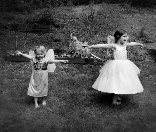 Little ballerina girls - Seattle, Washington