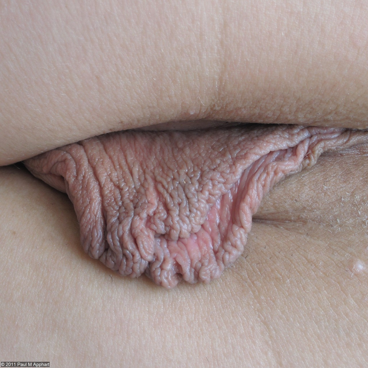 erotic-closeups:  Erotic Closeups