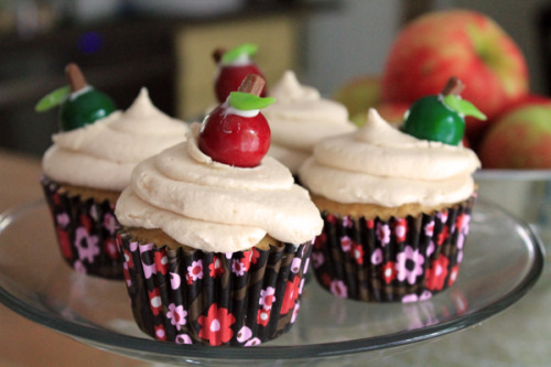 gastrogirl:  apple cider cupcakes with caramel frosting.