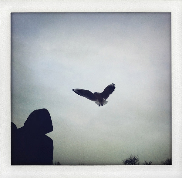 13.12.2011 - Tuileries Garden, Paris