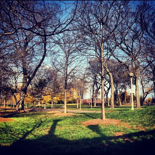 Such a nice fall day. #chicago #grantpark #fall #nature #green (at Grant Park Chicago)