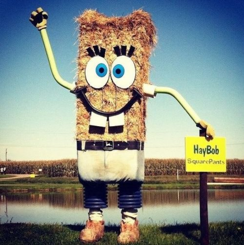 Haybob Squarepants Hay always points to civilization.